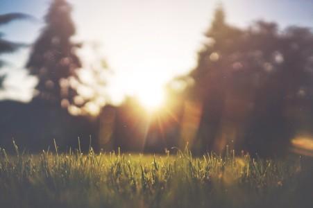 slunečno VOLNĚ